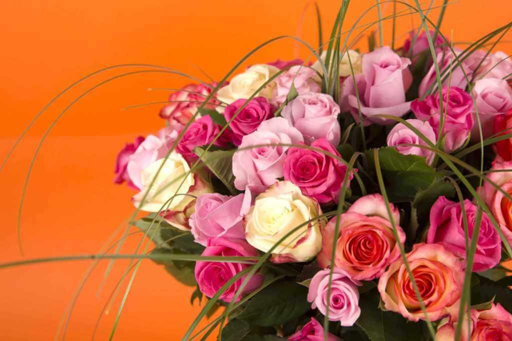 bouquet de roses de toutes couleurs
