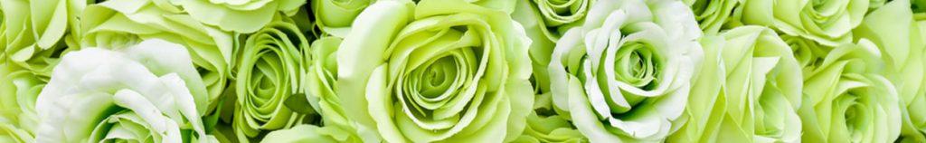 fleurs vertes