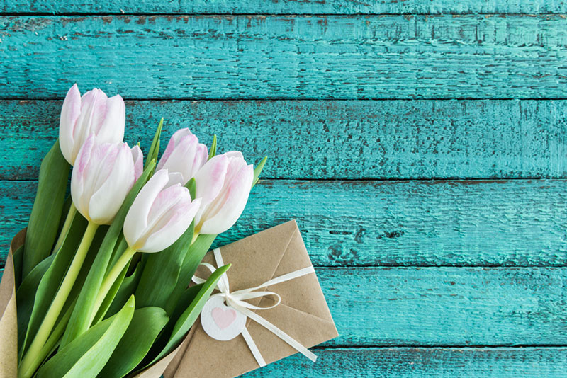 symbole des fleurs blanches