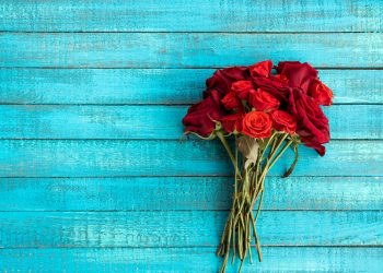 beau bouquet de roses rouges