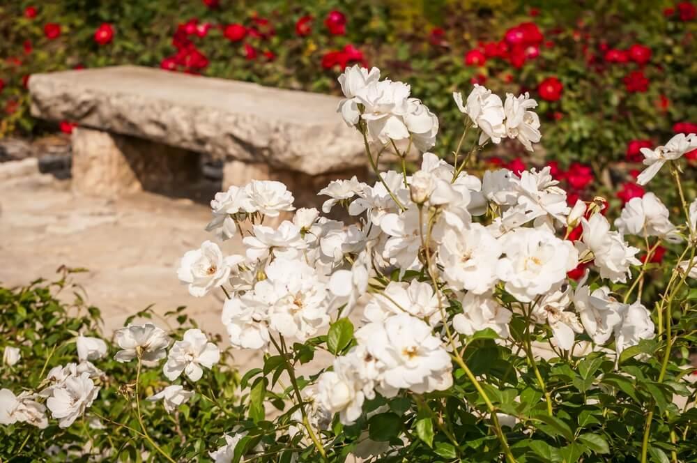 fleurs deuil signification