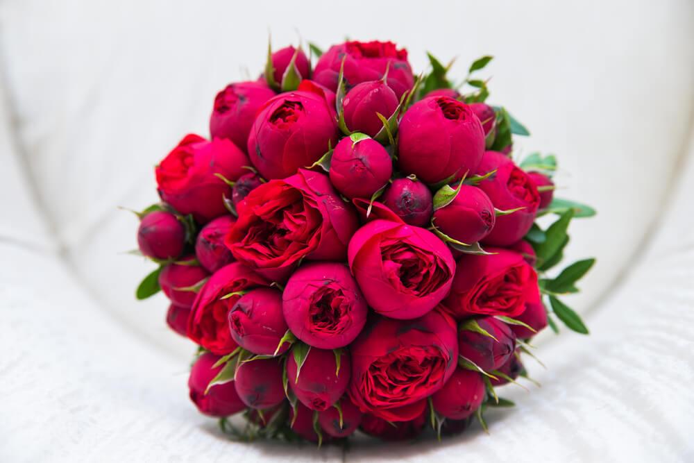 fleurs d'amours
